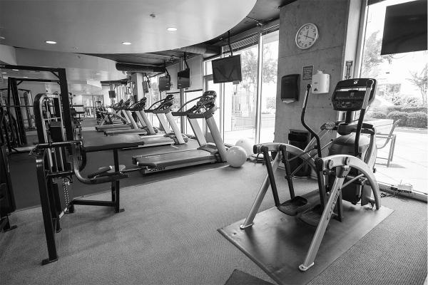 Solaire_0007_gym1